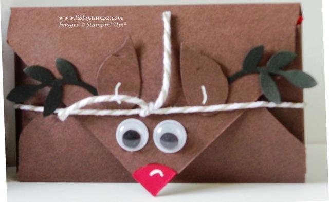 reindeer poop close-up