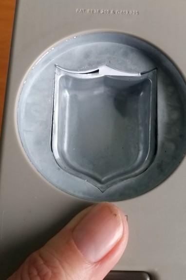 scallop edge 1