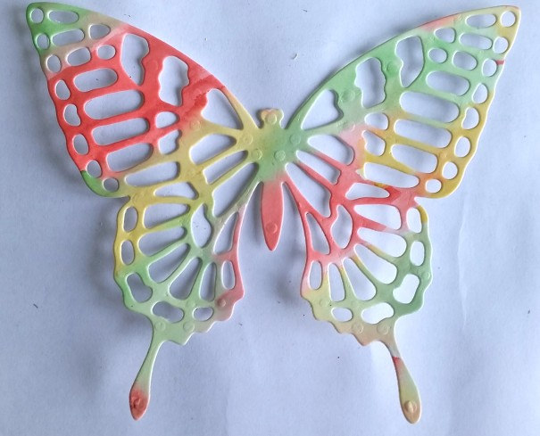 butterfly-_-coloured